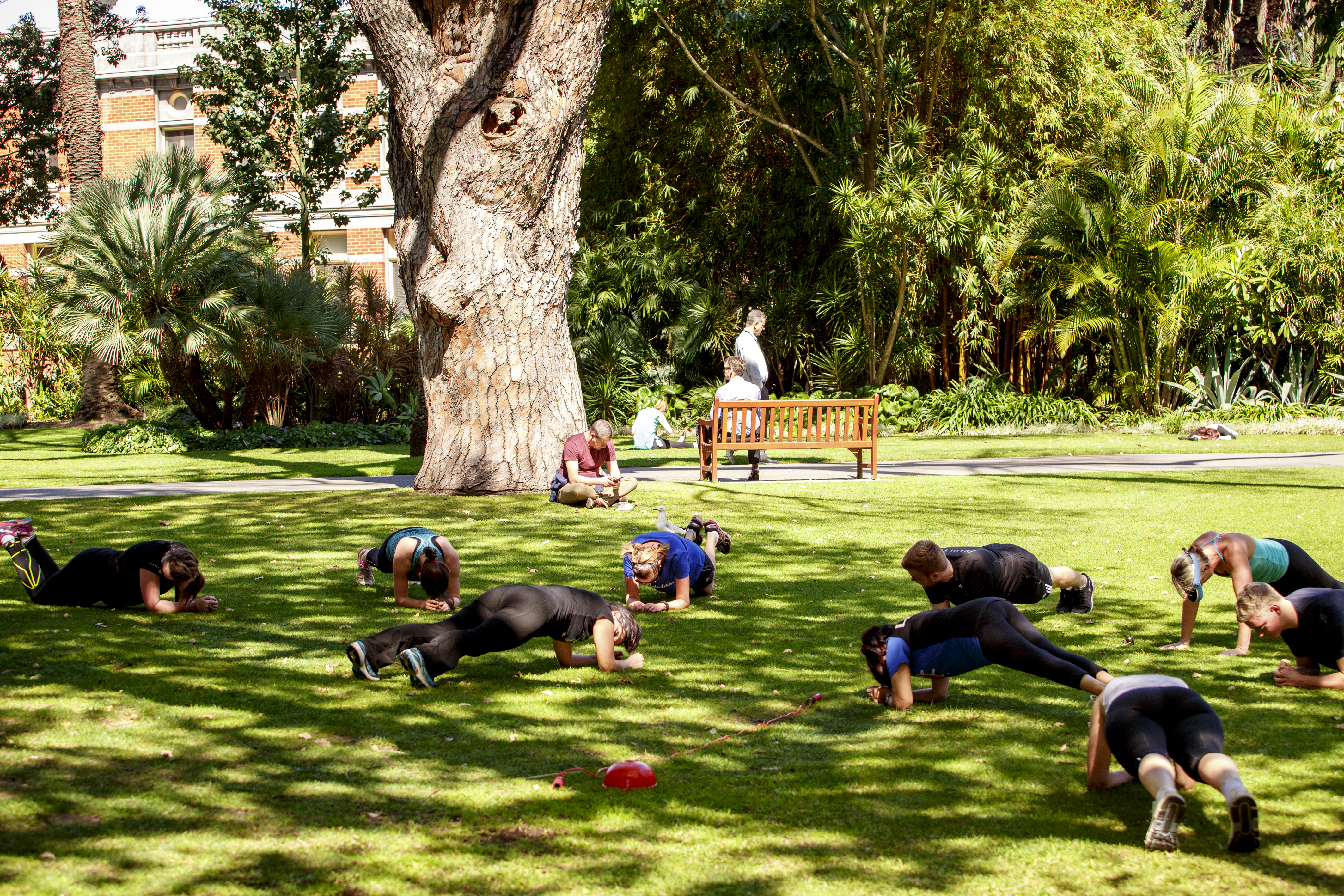 Group fitness sessions at council house gardens